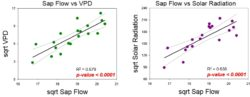 Sap Flow Vs VPD and Solar Radiation
